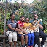 Тематический парк Safari World