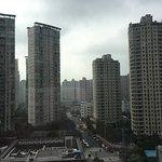 Photo de 596476