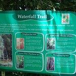 Waterfall trail details