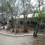 Foto de Calao Tented Camp