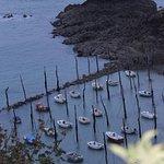 Petit port de Gwin Zegal avec les amarres en orme