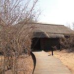Lion Sands - Tinga Lodge Foto