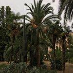 Hotel Termes de Montbrio - Resort Spa & Park Foto