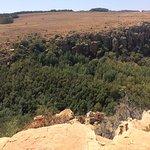 Suikerboschfontein