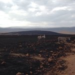 Ngurdoto Crater Foto