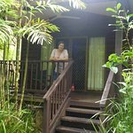 Our Tropical Rain Forest Bungallow