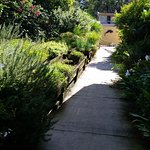 pathway outside