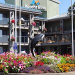 Photo of Accent Inn Victoria