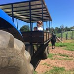 As well as our Farm and Factory Tours you can also take a Tractor Ride.
