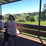View over the paddocks at Maleny from the Tractor Ride.