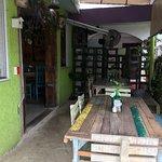 Greenverde Foto