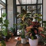 Photo de Soho House Berlin