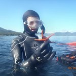 Diver team brings starfish up for close encounter :-)