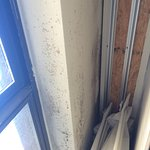 Mold on the window sill in a first floor room !