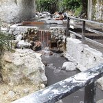 Definitely visit the live volcano's hot spring! Awesome mud treatment at the spring!