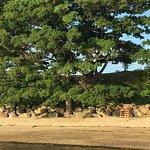 Пляж Stage Fort Park