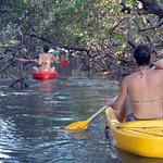 Passeio de caiaque nos túneis do mangue