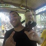 Monkeys were fun