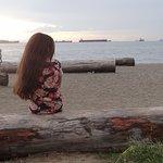 Vários troncos deitados para sentar e observar a paisagem