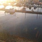 Foto van Reluctant Fisherman Inn