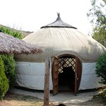 Our Yurt and private area