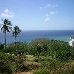 Tobago naturally fun paradise
