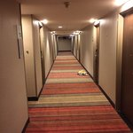 Hallway with room service dishes that sat there for two days