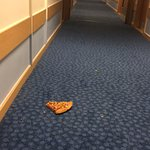 Pizza staff intended to leave on the floor for 8 hours