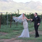 Bride and Groom in the Vinyard
