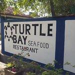 Turtle Bay Sea Food Restaurant Foto
