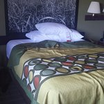 Inviting bed -Super 8 Troy, MO  Sept. 2016