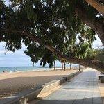 Foto de Hotel Trinimar