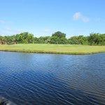The Tides Golf Club照片