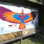 Aroostook National Wildlife Refuge