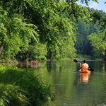 Canoeing on the Cowpasture River