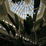 A view to the skylight from our table.