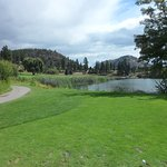 Tee shot on 8th hole from the Blue Tee 410 Yards