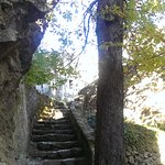 Steps, trees and sunlight