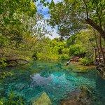 Indigenous Eyes Ecological Park & Reserve, Puntacana Resort & Club.