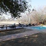 zwembad met uitzicht op drinkpoel