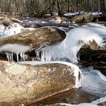 Curtis Creek, during the winter.  Gorgeous trout stream, year-round access.