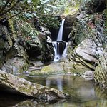 Duggers Creek Falls, one of 8 waterfalls in our area.