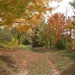 Olde Orchard Farm Foto