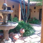 The wonderful inner courtyard, a shady place to rest after a day trip to the desert.