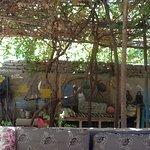 Photo de Restaurant Mohammed
