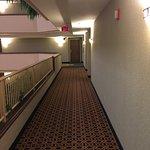 Holiday Inn Springdale