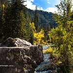 Fall Color_Spearfish Canyon
