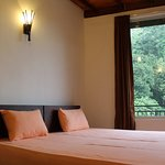 Standard Double Room overlooking the forest