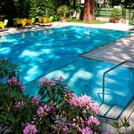 Outdoor Swimming Pool - Terrace