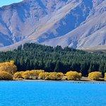 Foto de Lake Tekapo